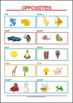 Learning Opposites for Kindergarten Children